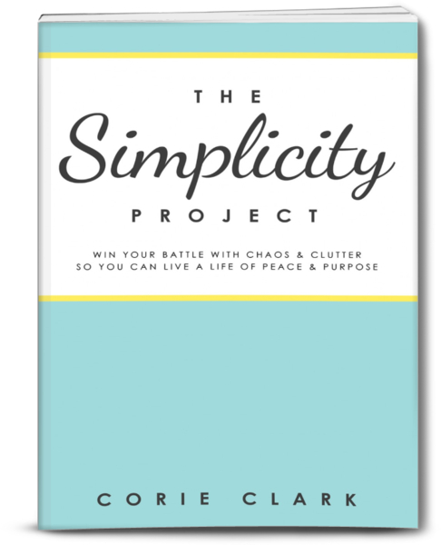 Simplicity_Project_Cover_3D_grande